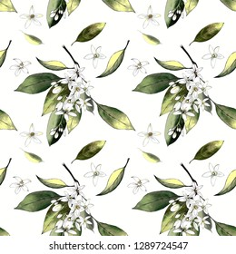 seamless pattern with flowers and leaves on white background