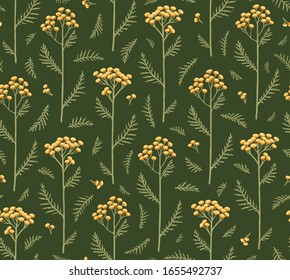 Seamless pattern with flowers of tansy. Tanacetum on a Green Background. Botanical hand drawn illustration