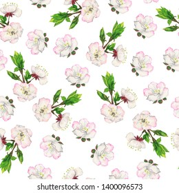 Seamless pattern with fresh cherry blooming branches and green leaves on white background. Hand drawn watercolor illustration.