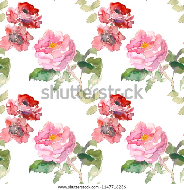 Seamless pattern of garden red rose flower. Watercolor floral illustration. Botanical decorative element. Flower concept. Botanica concept.