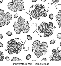 Seamless pattern with grape leaves, berries, branches, brush. Graphic hand-drawn dots on a white background. Design for packaging, wrapper, menu, template, label, postcard.