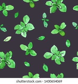 Seamless pattern with green basil leaves and branches. Loose watercolor style. Dark gray background.