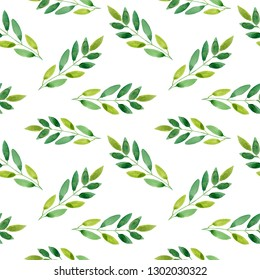 Seamless pattern of green leaves.  foliage natural branches, green leaves, herbs, tropical plant hand drawn watercolor.  Fresh beauty rustic eco friendly background on white
