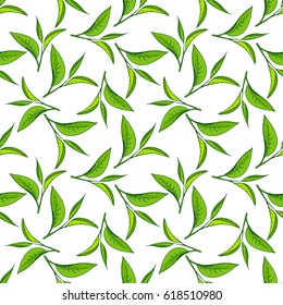 Seamless pattern with green tea leaves on white background. Hand painting on paper. May used in fabric, wrapping paper. Raster illustration