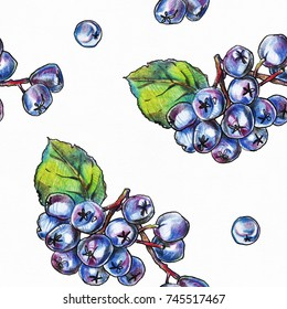Seamless pattern with hand drawn black chokeberry berries on white textured paper.