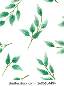 seamless pattern hand-drawn watercolor twigs with leaves