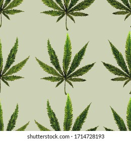 Seamless pattern with hemp leaves. Cannabis. Botanical ornament. Design for fabric, clothing, packaging.