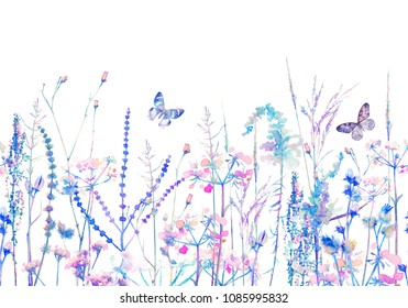 Seamless pattern horizontally rim. Floral border with herbs, wild flowers and butterfly. Colorful botanical Illustration on white background. Bright colors watercolor, blue spring summer