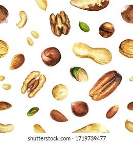 Seamless pattern of illustrations of different sorts of nuts watercolor drawn. Pine nuts, pistachio, peanut, hazelnut, macadamia, pecan, cashew, Brazil nut, walnut