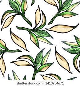 Seamless pattern of leaves and twigs.Abstract summer pattern on a white background.Sammer print