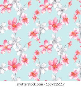 Seamless pattern with pink, black and white cherry blossom and leaves on a blue background. Stock illustration. Hand painted in watercolor.