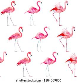 Seamless pattern pink flamingo watercolor
