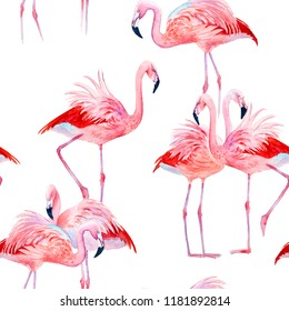 Seamless pattern pink flamingos watercolor. Exotic birds.