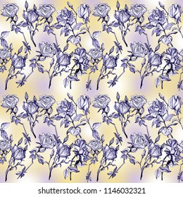 Seamless pattern of roses flowers, graphics, pencil, paper. Sketch hand drawing illustration.