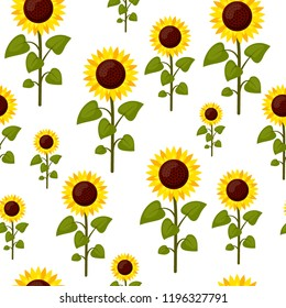 Seamless pattern sunflowers cartoon isolated on a white background. Summer agriculture flat style  illustration