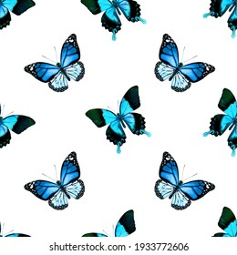 Seamless pattern with tropical blue butterflies