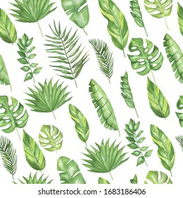 Seamless pattern with tropical leaves. On a white background. Watercolor hand drawing.