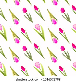 Seamless pattern with tulips. Hand drawn watercolor seamless pattern.