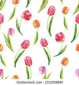 Seamless pattern with tulips on a white background. Botanical watercolor illustration. Suitable for fabric, cards, wrapping paper, paper, scrapbooking and other