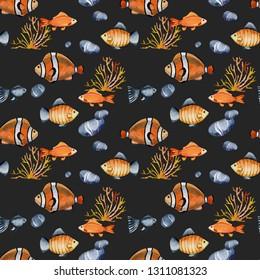 Imágenes Fotos De Stock Y Vectores Sobre Clown Fish