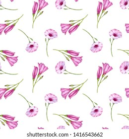 seamless pattern with watercolor drawing mallow bindweed flowers at white background, hand drawn illustration