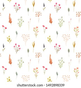 Seamless pattern of watercolor dried flowers, isolated on white background. Hand drawn painted flower illustration. Autumn design fashion fabric, textile, cover, wrapping paper product, blog, cloth