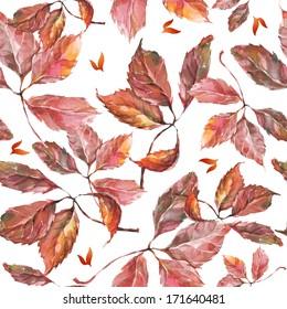 Nahtlose Muster mit Aquarellfarben, trockener Herbst, wilde Traubenblätter auf Weiß