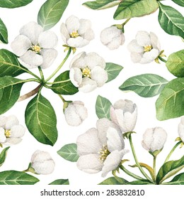 Seamless pattern with watercolor illustrations of apple flowers