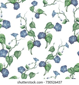 Seamless pattern of watercolor morning glories
