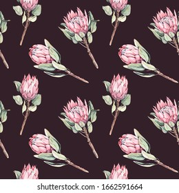 Seamless pattern of watercolor protea flowers. Pink flowers on dark  background. For wrappers, wallpapers, textiles and your creativity.