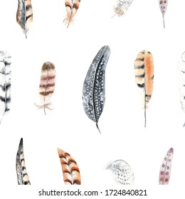 Seamless pattern with watercolor striped and polka dots feathers.  Feather of a pheasant, owl and other birds.