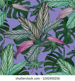 Seamless pattern with watercolor tropical leaves. Calathea. Surface design. Hand paint.