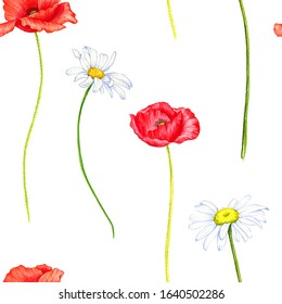 seamless pattern with wild flowers, red poppies and daisies, drawing by color pencils, field herbs, natural background, hand drawn illustration