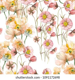 Seamless pattern Yellow poppy and wild pink flower. Watercolor floral illustration. Botanical decorative element. Flower concept. Botanica concept.