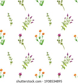 Seamless pattern of yellow and purple flowers painted with watercolor and colored pencils isolated on a white background.Floral hand painted seamless pattern with wild plants.