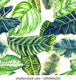 seamless patterns of tropical leaves, watercolor illustration, botanical painting, jungle design,  philodendron, ficus, palm