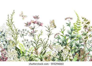 seamless rim. Border with Herbs and wild flowers, leaves. Botanical Illustration Colorful illustration on white background. Spring composition with butterfly