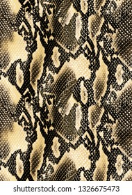 Seamless Snake Skin Pattern for Textile Print for printed fabric design for Womenswear, underwear, activewear kidswear and menswear and Decorative Home Design, Wallpaper Print