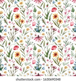 Seamless vintage background with wild flowers in watercolor stile. Wildflowers and herbs hand-drawn. Floral background for fabrics, paper, wallpaper, cards