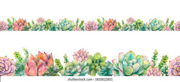 Seamless watercolor border on a white background with succulent plants