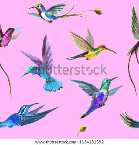 Seamless Watercolor Pattern Multicolored Hummingbirds On Stock