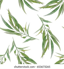 seamless watercolor tropical  leaves branch. Hand painted eucalyptus on white background.  for textile,paper,tag,logo,brand,web design,banner,label