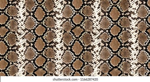 Seamlesss python skin, piton texture, snake pattern, animal skin