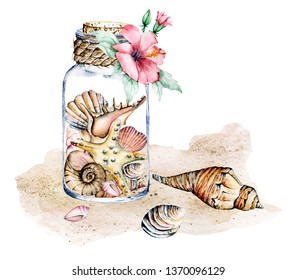 Seashells in  glass jar, marine scenery. Watercolor flower, starfish and other shells on sea beach. Isolated on white background. Hand drawing. Marine collection.