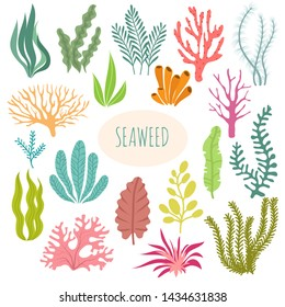 Seaweeds. Aquarium plants, underwater planting. seaweed silhouette isolated set. Illustration of aquatic plant, nature wildlife