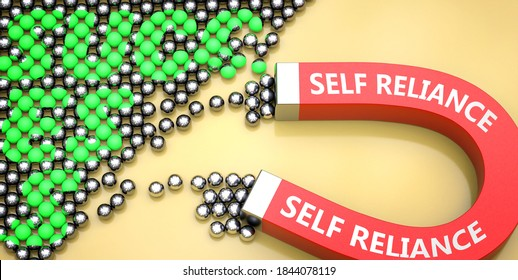 Self reliance attracts success - pictured as word Self reliance on a magnet to symbolize that Self reliance can cause or contribute to achieving success in work and life, 3d illustration