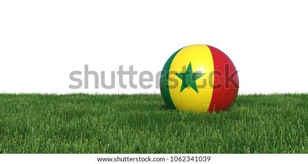 Senegal Senegalese flag soccer ball lying in grass, isolated on white background. 3D Rendering, Illustration.