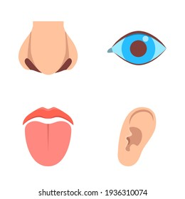 Sense organ icons set in flat style. Human perception elements - vision, hearing, taste, smell.