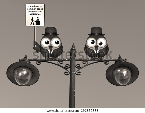 Sepia comical common sense sign with birds perched on a lamppost against a clear blue sky