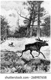 Serge and Jean did not neglect to hunt, vintage engraved illustration. Jules Verne Cesar Cascabel, 1890.